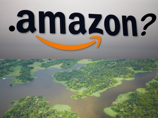 .Amazon vs ICANN